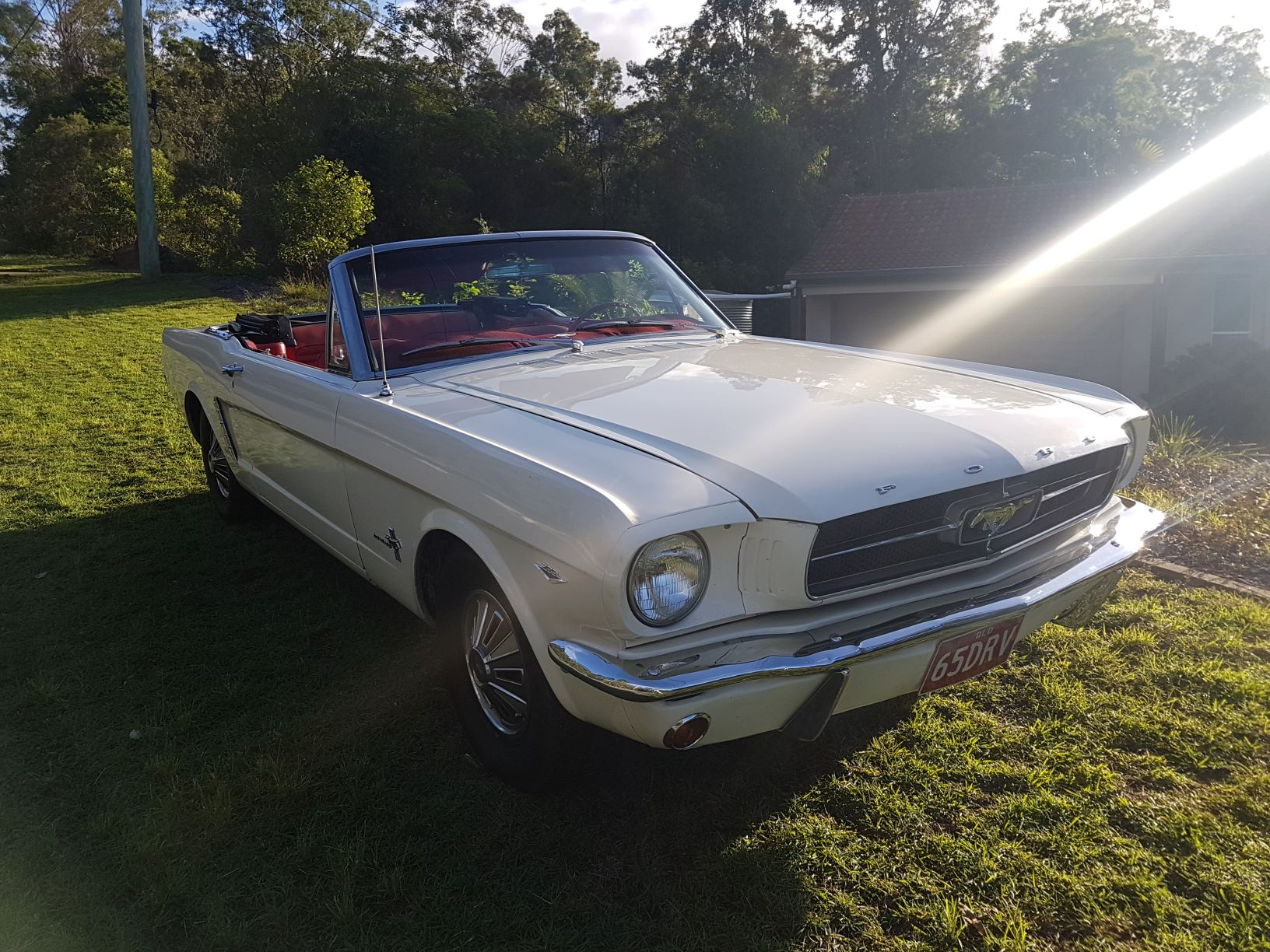 """Holly-Rose"" – 1965 Mustang Convertible"